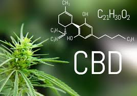 The CBD Market Is Booming. What do We Know About the Product?